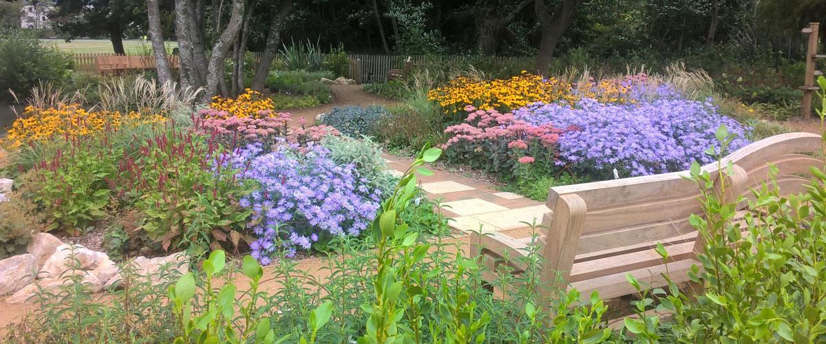 The Quiet Garden, Poole Park